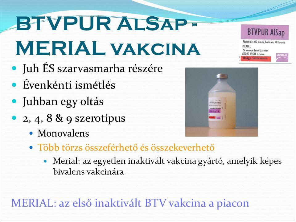 BTVPUR AlSap - MERIAL vakcina Juh ÉS szarvasmarha részére Évenkénti ismétlés Juhban egy oltás 2, 4, 8 & 9 szerotípus Monovalens Több törzs összeférhető és összekeverhető Merial: az egyetlen inaktivált vakcina gyártó, amelyik képes bivalens vakcinára MERIAL: az első inaktivált BTV vakcina a piacon