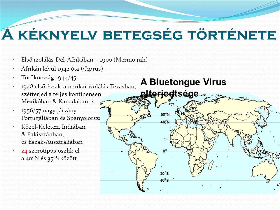 A kéknyelv betegség története Első izolálás Dél-Afrikában ~ 1900 (Merino juh) Afrikán kívül 1942 óta (Ciprus) Törökország 1944/45 1948 első észak-amerikai izolálás Texasban, szétterjed a teljes kontinensen Mexikóban & Kanadában is 1956/57 nagy járvány Portugáliában és Spanyolországban Közel-Keleten, Indiában & Pakisztánban, és Észak-Ausztráliában 24 szerotípus oszlik el a 40 o N és 35 o S között A Bluetongue Virus elterjedtsége