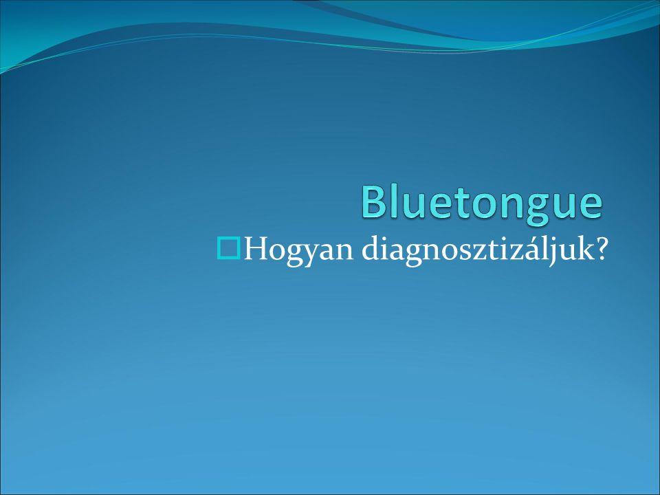  Hogyan diagnosztizáljuk?
