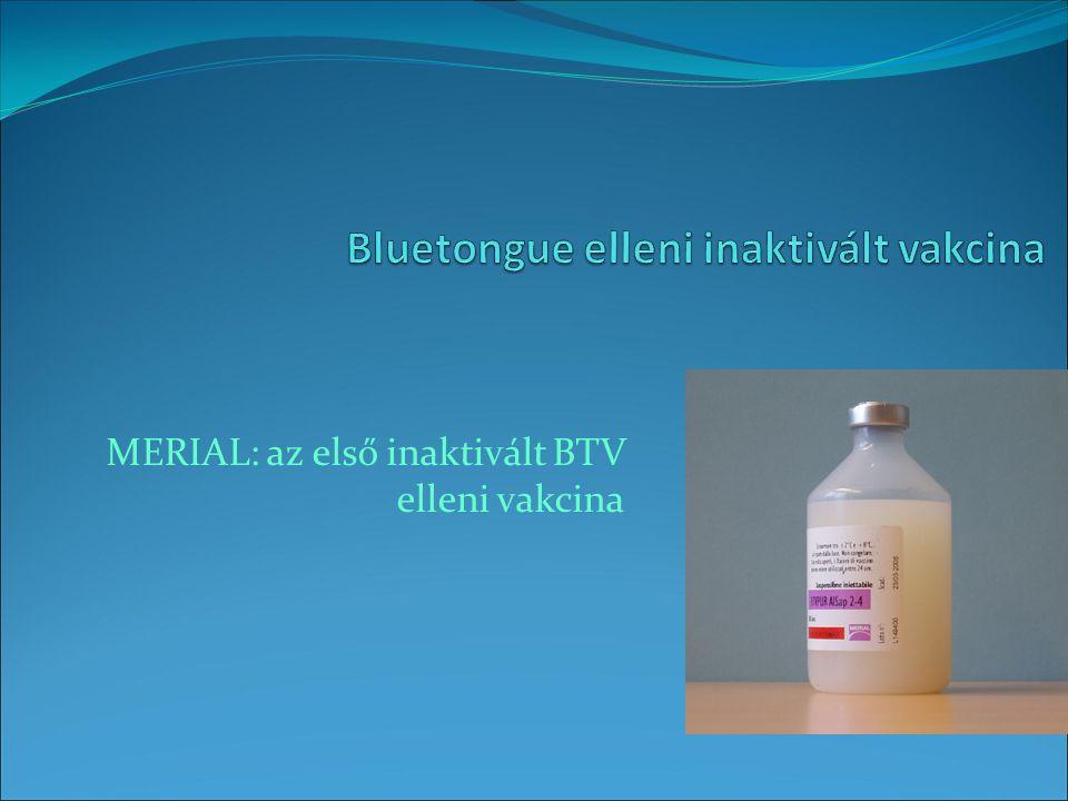 MERIAL: az első inaktivált BTV elleni vakcina
