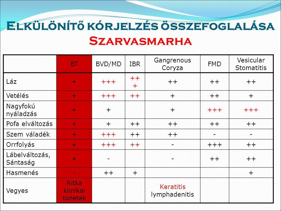 Elkülönít ő kórjelzés összefoglalása Szarvasmarha BTBVD/MDIBR Gangrenous Coryza FMD Vesicular Stomatitis Láz++++ ++ Vetélés+++++++ + Nagyfokú nyáladzás ++++++ Pofa elváltozás++++ Szem váladék++++++ -- Orrfolyás++++++-+++++ Lábelváltozás, Sántaság +--++ Hasmenés-++++ Vegyes Ritka klinikai tünetek Keratitis lymphadenitis