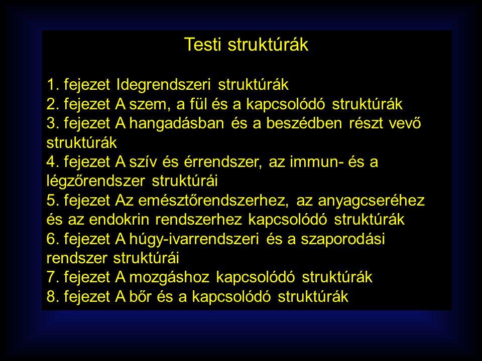 Testi struktúrák 1. fejezet Idegrendszeri struktúrák 2.