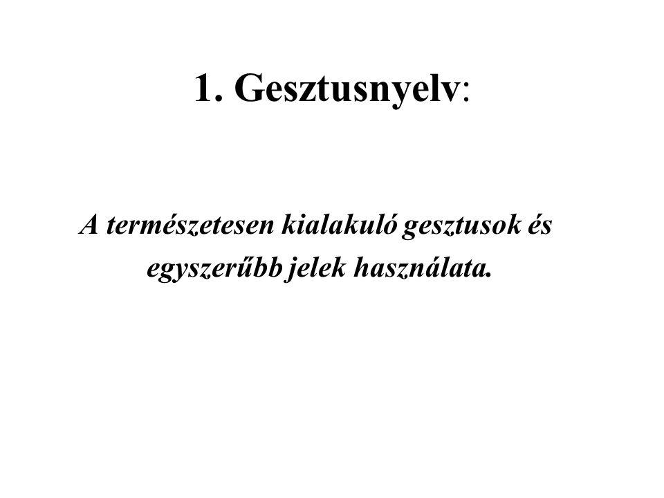 2.Taktilis jelnyelv: A siket jelnyelv taktilis változata.