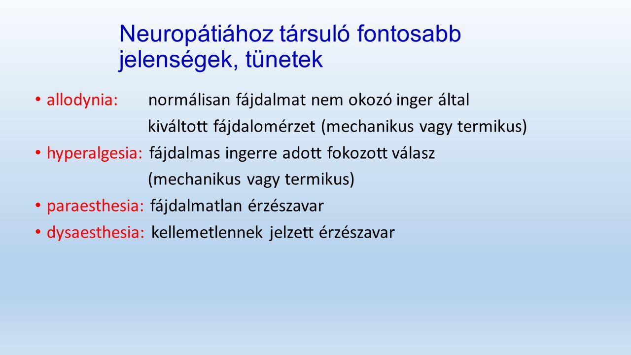 Neuropátiához társuló fontosabb jelenségek, tünetek allodynia: normálisan fájdalmat nem okozó inger által kiváltott fájdalomérzet (mechanikus vagy termikus) hyperalgesia: fájdalmas ingerre adott fokozott válasz (mechanikus vagy termikus) paraesthesia: fájdalmatlan érzészavar dysaesthesia: kellemetlennek jelzettérzészavar