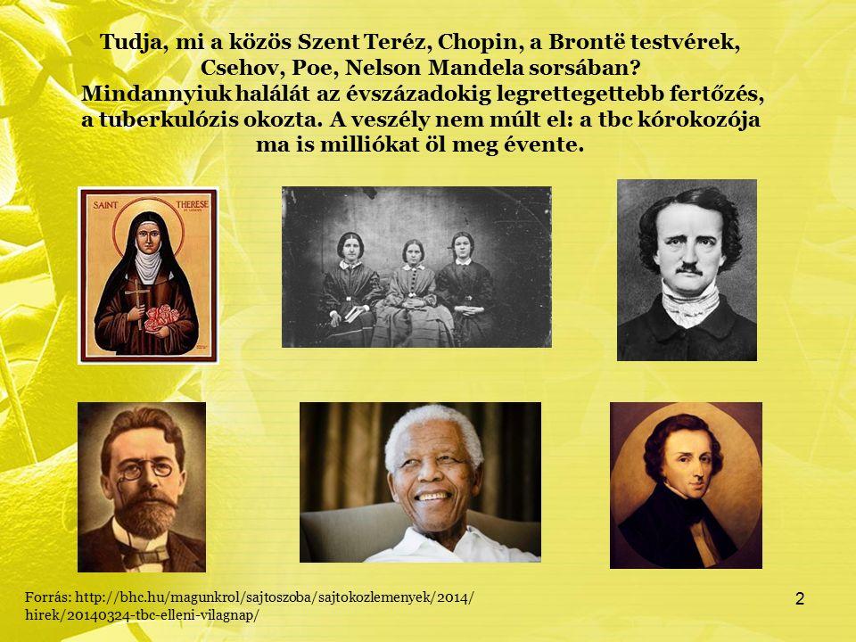 Tudja, mi a közös Szent Teréz, Chopin, a Brontë testvérek, Csehov, Poe, Nelson Mandela sorsában.