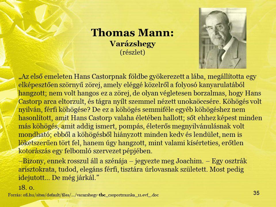 """Thomas Mann: Varázshegy (részlet) """"Az első emeleten Hans Castorpnak földbe gyökerezett a lába, megállította egy elképesztően szörnyű zörej, amely eléggé közelről a folyosó kanyarulatából hangzott; nem volt hangos ez a zörej, de olyan végletesen borzalmas, hogy Hans Castorp arca eltorzult, és tágra nyílt szemmel nézett unokaöccsére."""