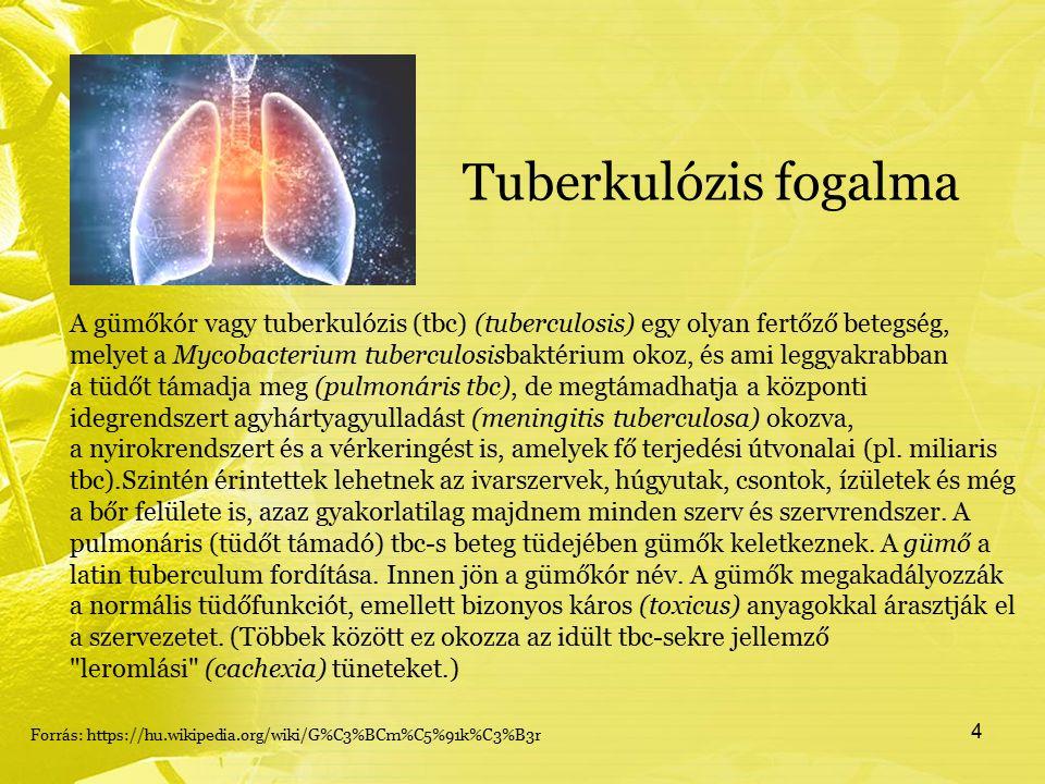 Tuberkulózis fogalma A gümőkór vagy tuberkulózis (tbc) (tuberculosis) egy olyan fertőző betegség, melyet a Mycobacterium tuberculosisbaktérium okoz, és ami leggyakrabban a tüdőt támadja meg (pulmonáris tbc), de megtámadhatja a központi idegrendszert agyhártyagyulladást (meningitis tuberculosa) okozva, a nyirokrendszert és a vérkeringést is, amelyek fő terjedési útvonalai (pl.