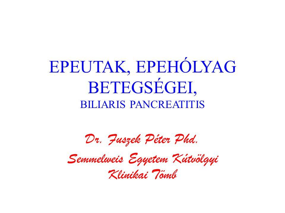 Cholelithiasis Klinikai lefolyás – Néma epekő, epekólika, hydrops vesicae felleae Szövődmények – Cholecystitis, cholangitis, epehólyag perforatio, epekő ileus, peritonitis, choledocholithiasis, Diagnózis – Hasi UH, CT, MRI – Labor – ERCP.
