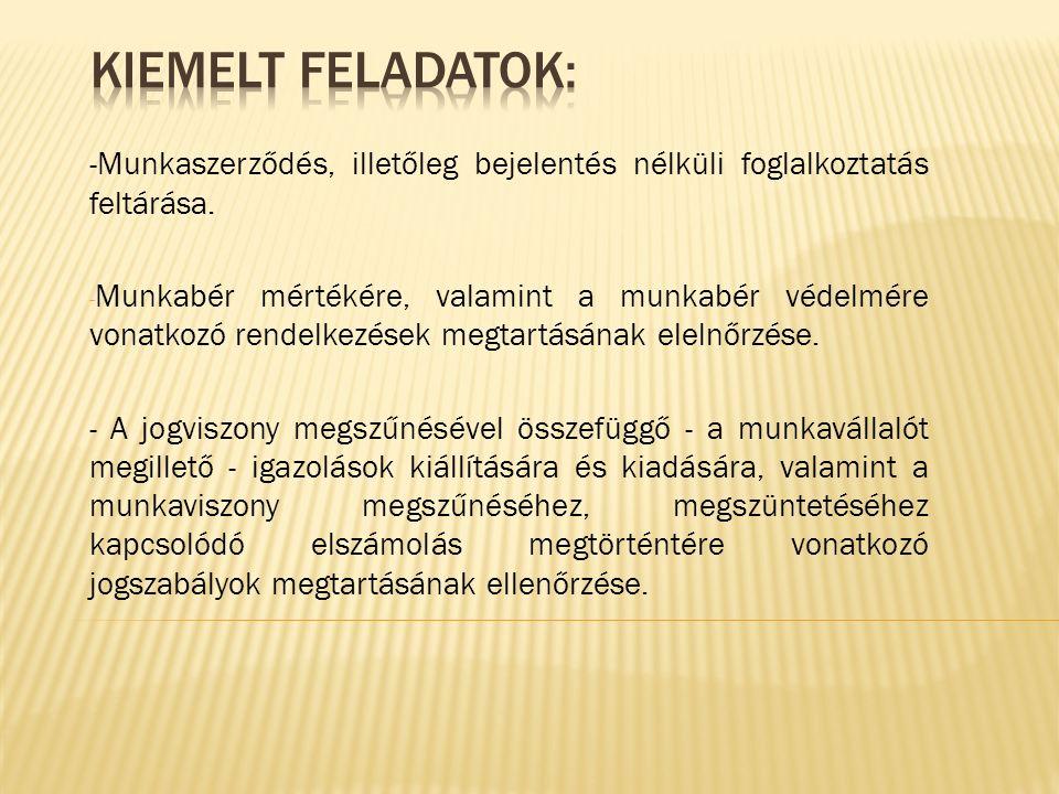 -Munkaszerződés, illetőleg bejelentés nélküli foglalkoztatás feltárása. - Munkabér mértékére, valamint a munkabér védelmére vonatkozó rendelkezések me