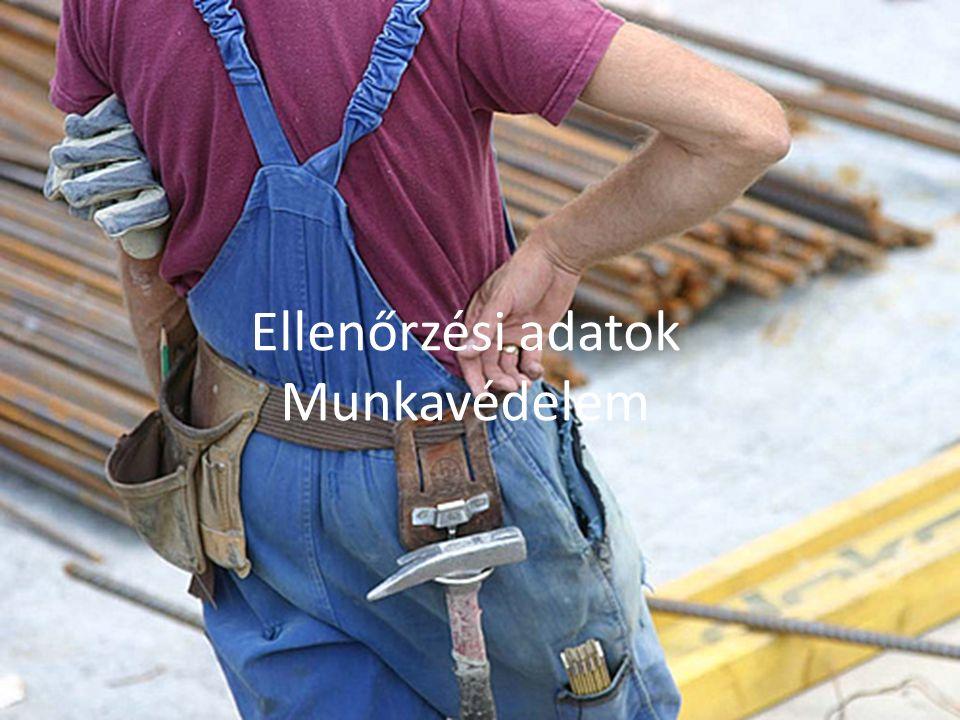 Ellenőrzött munkáltatók száma 2011. évben 900 munkavédelmi ellenőrzés