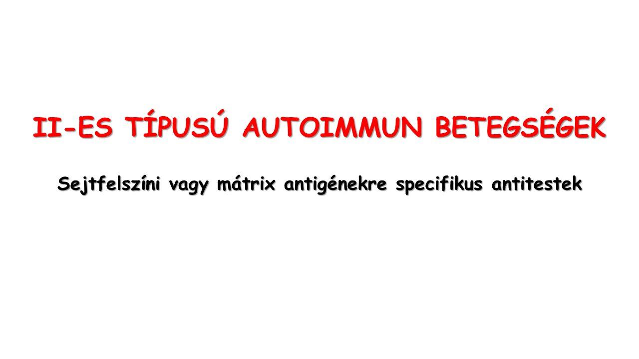 II-ES TÍPUSÚ AUTOIMMUN BETEGSÉGEK Sejtfelszíni vagy mátrix antigénekre specifikus antitestek