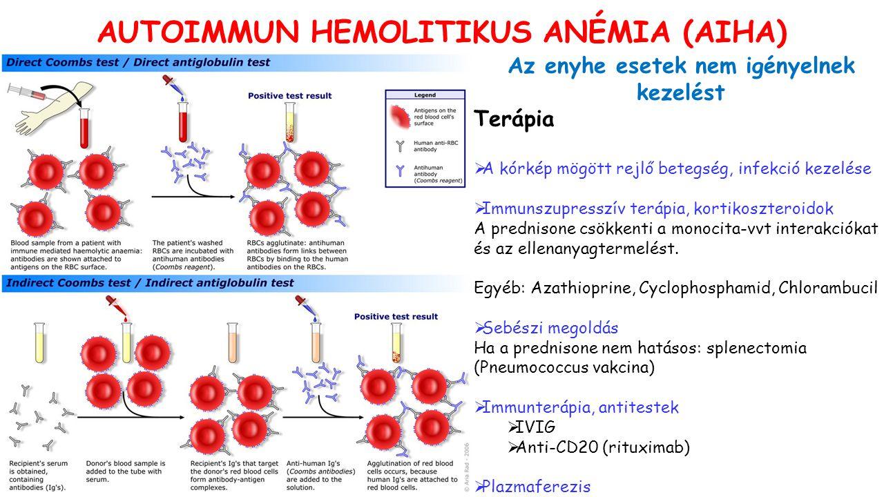 Az enyhe esetek nem igényelnek kezelést Terápia  A kórkép mögött rejlő betegség, infekció kezelése  Immunszupresszív terápia, kortikoszteroidok A prednisone csökkenti a monocita-vvt interakciókat és az ellenanyagtermelést.