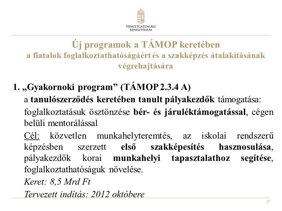 """27 Új programok a TÁMOP keretében a fiatalok foglalkoztathatóságáért és a szakképzés átalakításának végrehajtására 1. """"Gyakornoki program"""" (TÁMOP 2.3."""
