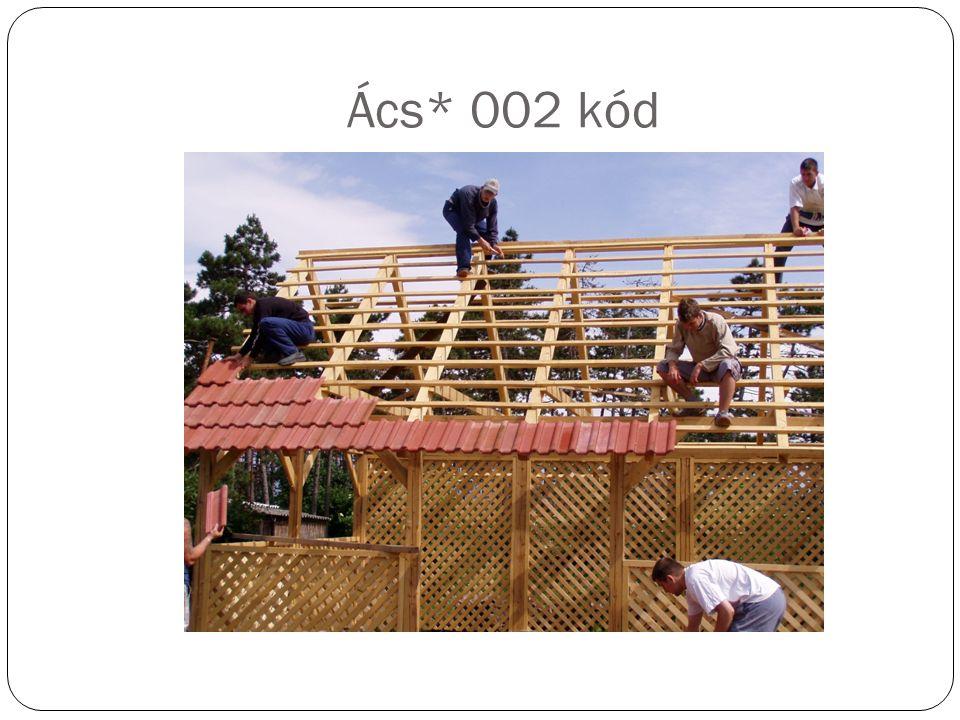 Ács* 002 kód