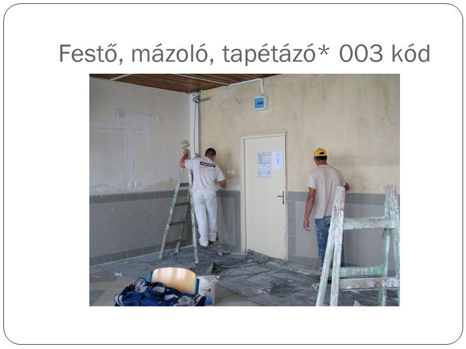 Festő, mázoló, tapétázó* 003 kód