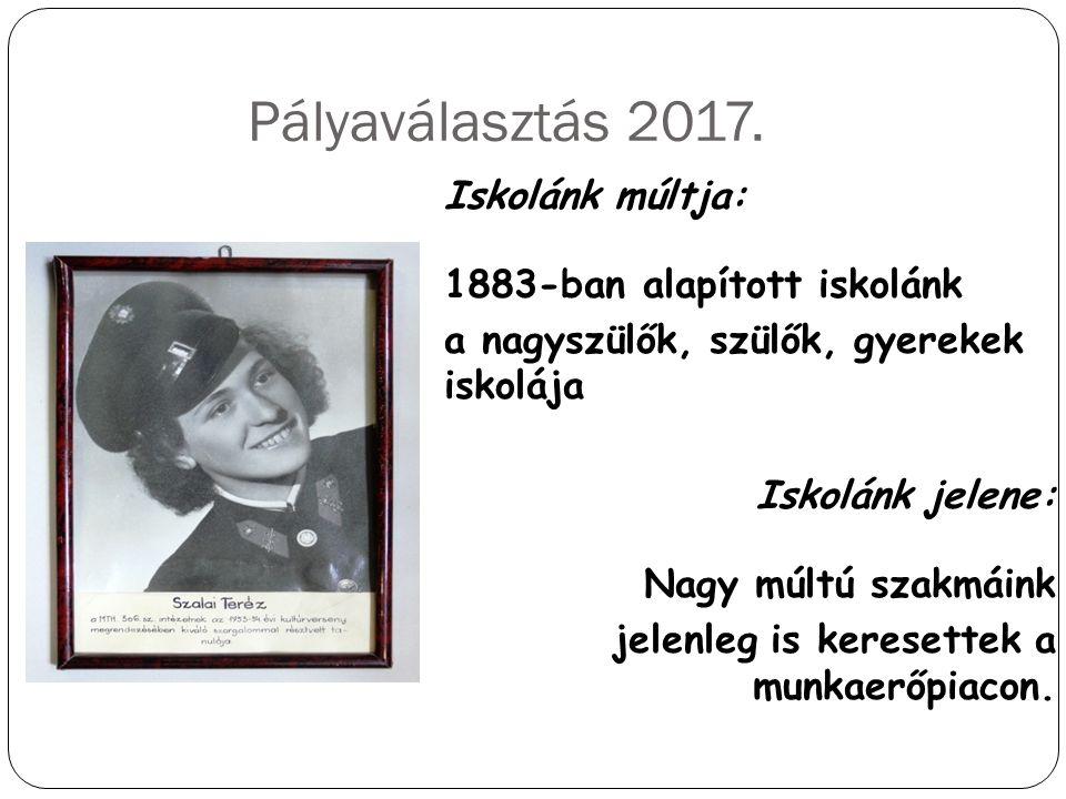 Pályaválasztás 2017.