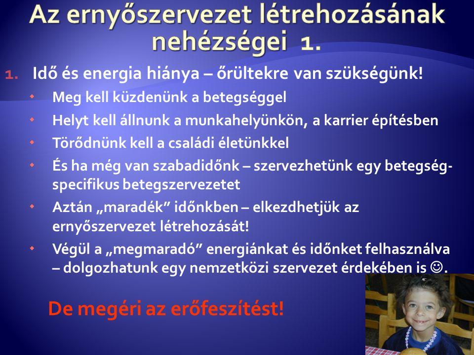 1.Idő és energia hiánya – őrültekre van szükségünk.