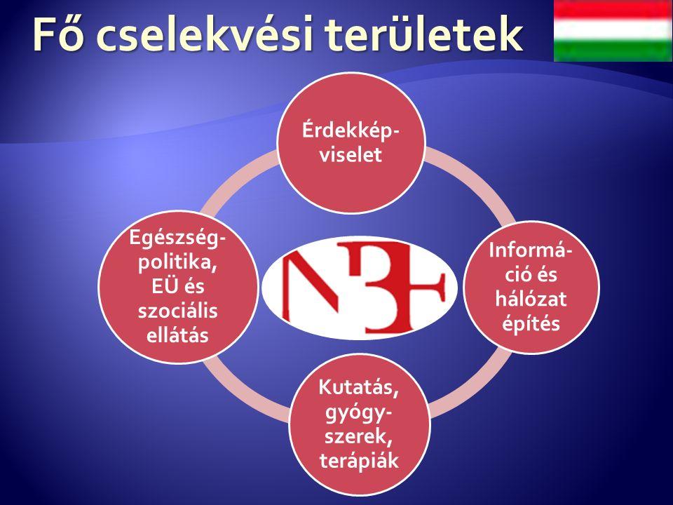 Fő cselekvési területek Érdekkép- viselet Informá- ció és hálózat építés Kutatás, gyógy- szerek, terápiák Egészség- politika, EÜ és szociális ellátás