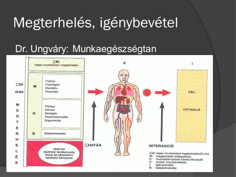 Megterhelés, igénybevétel Dr. Ungváry: Munkaegészségtan