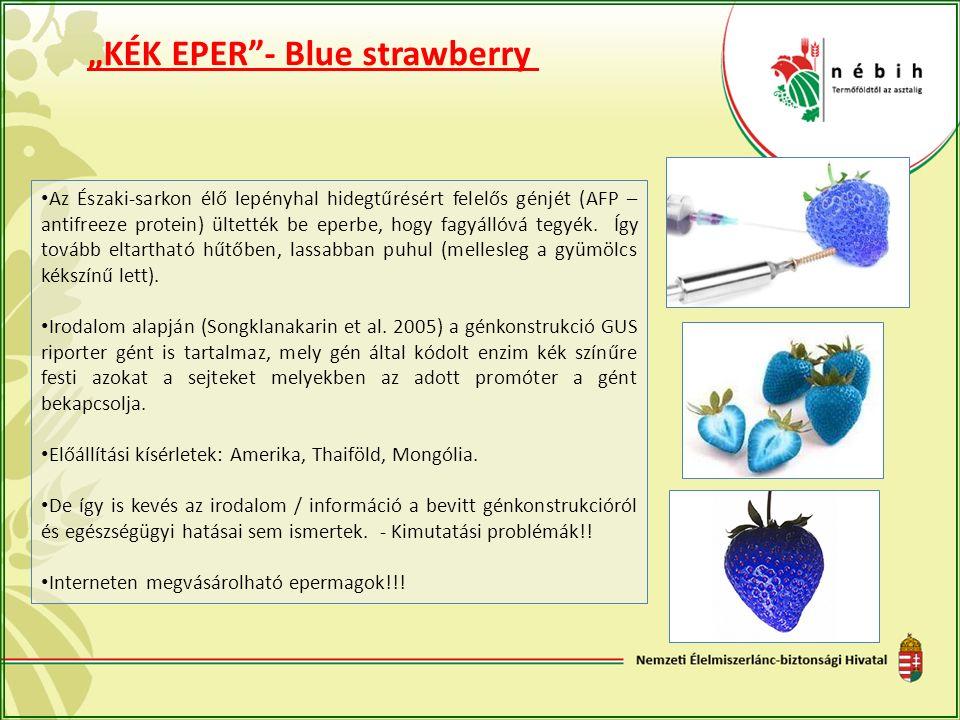 """""""KÉK EPER""""- Blue strawberry Az Északi-sarkon élő lepényhal hidegtűrésért felelős génjét (AFP – antifreeze protein) ültették be eperbe, hogy fagyállóvá"""