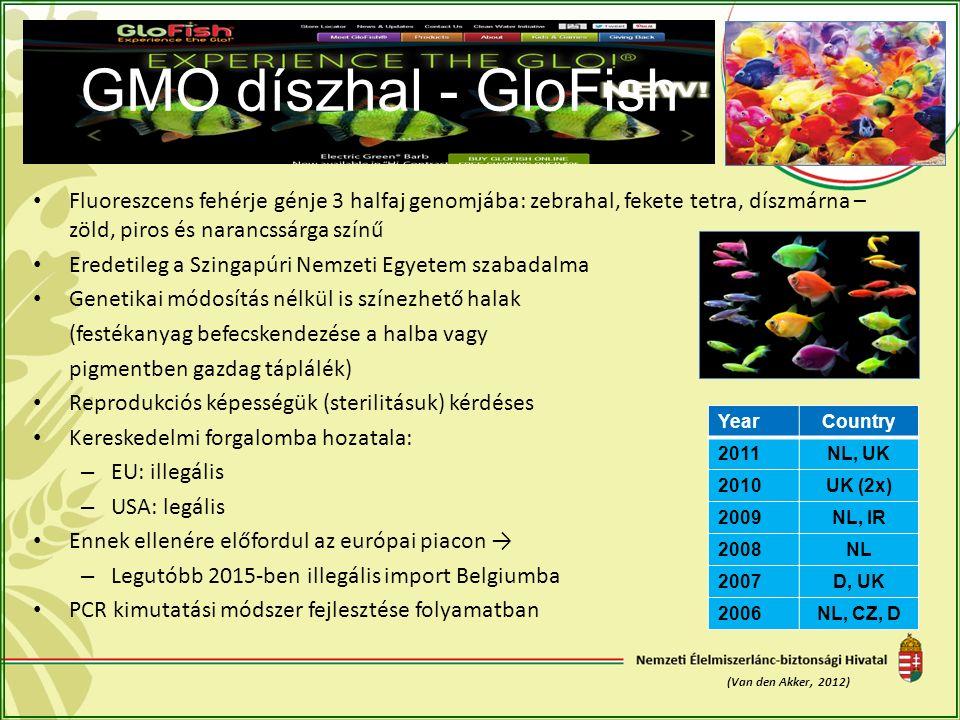 GMO díszhal - GloFish Fluoreszcens fehérje génje 3 halfaj genomjába: zebrahal, fekete tetra, díszmárna – zöld, piros és narancssárga színű Eredetileg