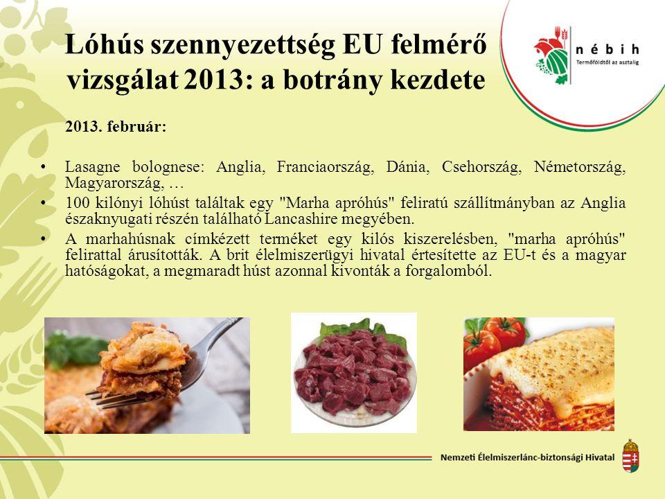 Lóhús szennyezettség EU felmérő vizsgálat 2013: a botrány kezdete 2013. február: Lasagne bolognese: Anglia, Franciaország, Dánia, Csehország, Németors