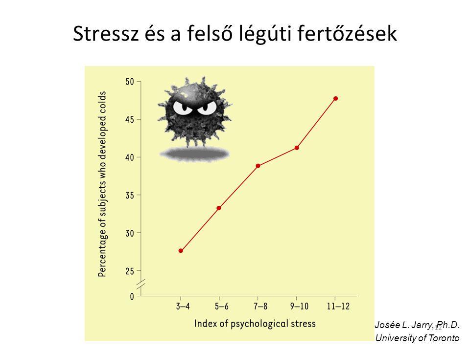 12 Stressz és a felső légúti fertőzések Josée L. Jarry, Ph.D. University of Toronto