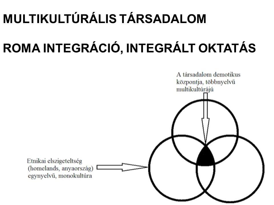 MULTIKULTÚRÁLIS TÁRSADALOM ROMA INTEGRÁCIÓ, INTEGRÁLT OKTATÁS