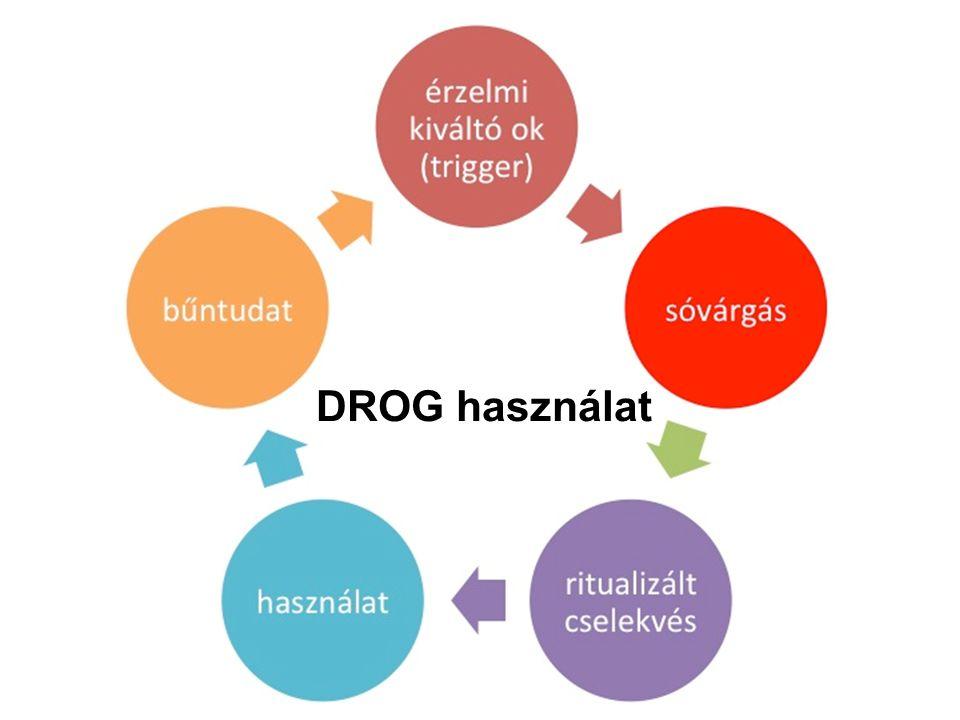 DROG használat