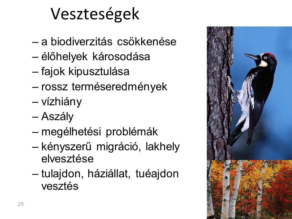 –a biodiverzitás csökkenése –élőhelyek károsodása –fajok kipusztulása –rossz terméseredmények –vízhiány –Aszály –megélhetési problémák –kényszerű migráció, lakhely elvesztése –tulajdon, háziállat, tuéajdon vesztés Veszteségek 29