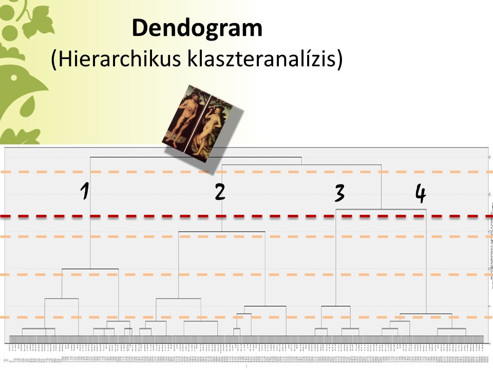 Dendogram (Hierarchikus klaszteranalízis) 1 2 34