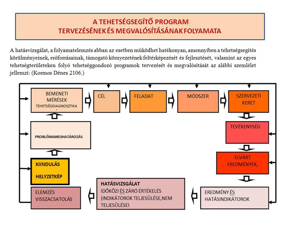 A TEHETSÉGSEGÍTŐ PROGRAM TERVEZÉSÉNEK ÉS MEGVALÓSÍTÁSÁNAK FOLYAMATA