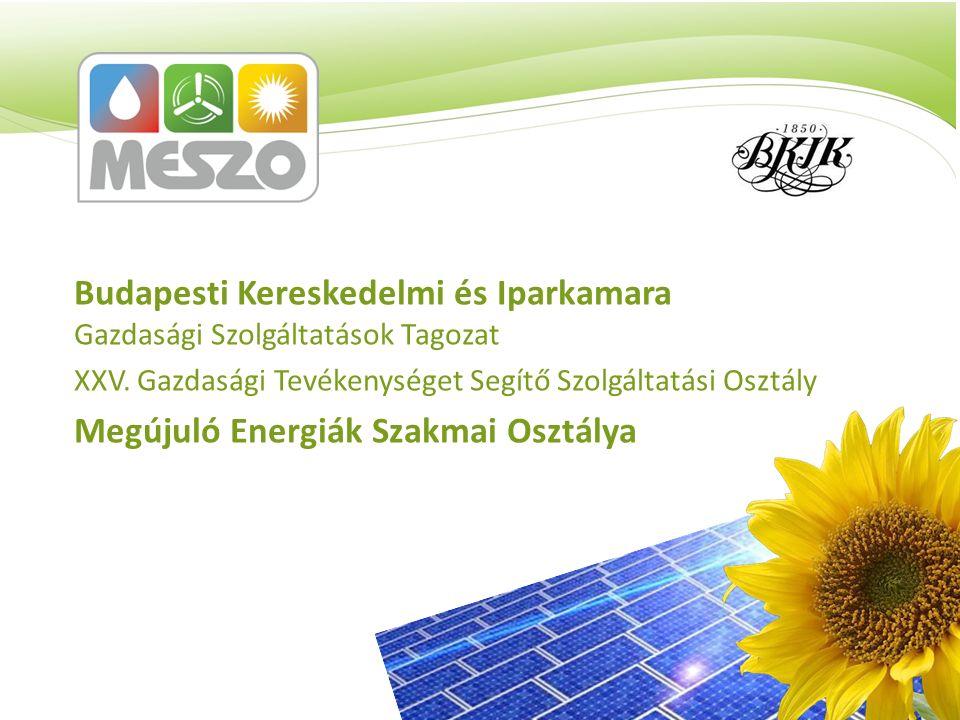 Budapesti Kereskedelmi és Iparkamara Gazdasági Szolgáltatások Tagozat XXV. Gazdasági Tevékenységet Segítő Szolgáltatási Osztály Megújuló Energiák Szak