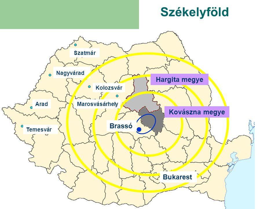 Cégalapítás önállóan, 100%-ban külföldi tulajdonnal, vagy vegyes-vállalatként, román és külföldi tulajdonos részvételével egyaránt.