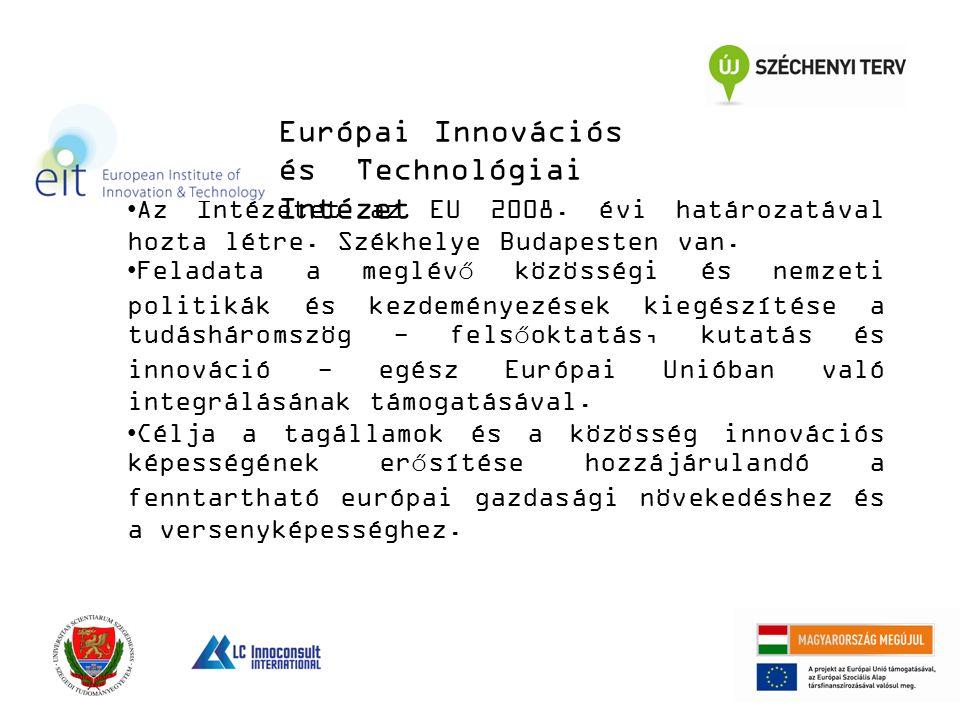 Az Intézetet az EU 2008. évi határozatával hozta létre. Székhelye Budapesten van. Feladata a meglévő közösségi és nemzeti politikák és kezdeményezések