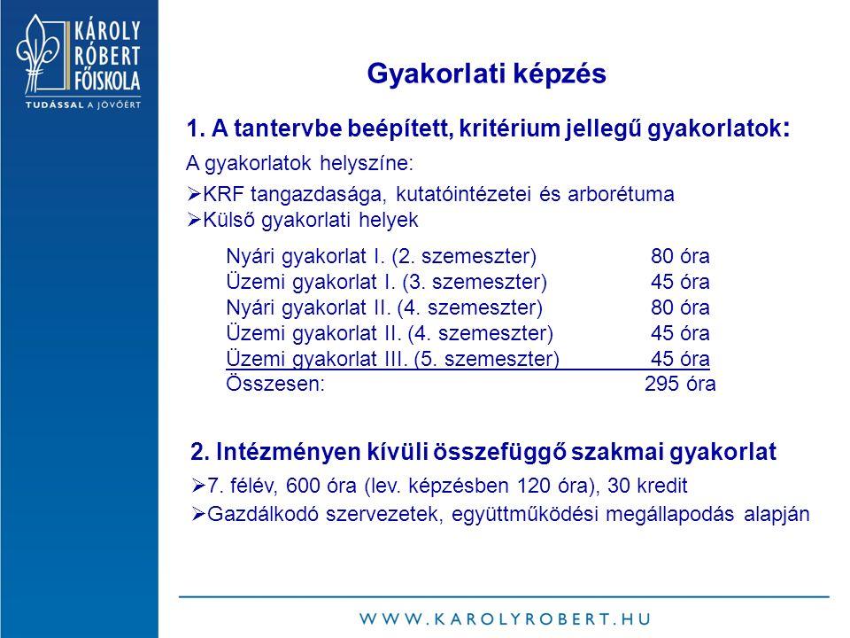 Gyakorlati képzés Nyári gyakorlat I. (2. szemeszter)80 óra Üzemi gyakorlat I.