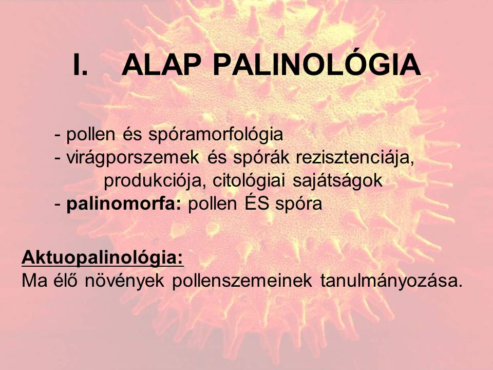 I.ALAP PALINOLÓGIA - pollen és spóramorfológia - virágporszemek és spórák rezisztenciája, produkciója, citológiai sajátságok - palinomorfa: pollen ÉS spóra Aktuopalinológia: Ma élő növények pollenszemeinek tanulmányozása.