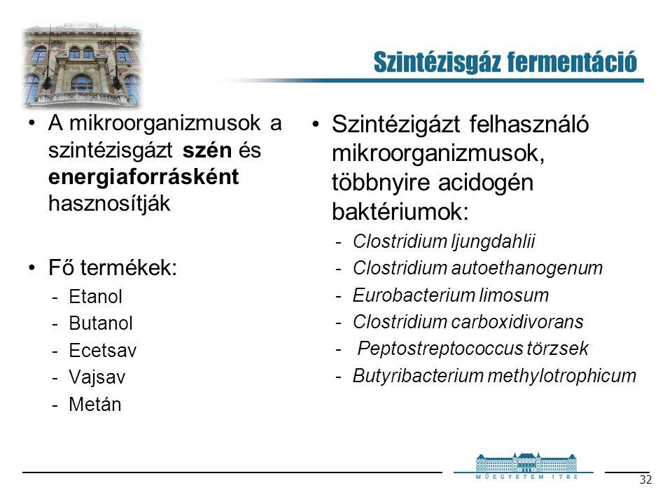 32 Szintézisgáz fermentáció A mikroorganizmusok a szintézisgázt szén és energiaforrásként hasznosítják Fő termékek: Etanol Butanol Ecetsav Vajsav Metán Szintézigázt felhasználó mikroorganizmusok, többnyire acidogén baktériumok: Clostridium ljungdahlii Clostridium autoethanogenum Eurobacterium limosum Clostridium carboxidivorans  Peptostreptococcus törzsek Butyribacterium methylotrophicum