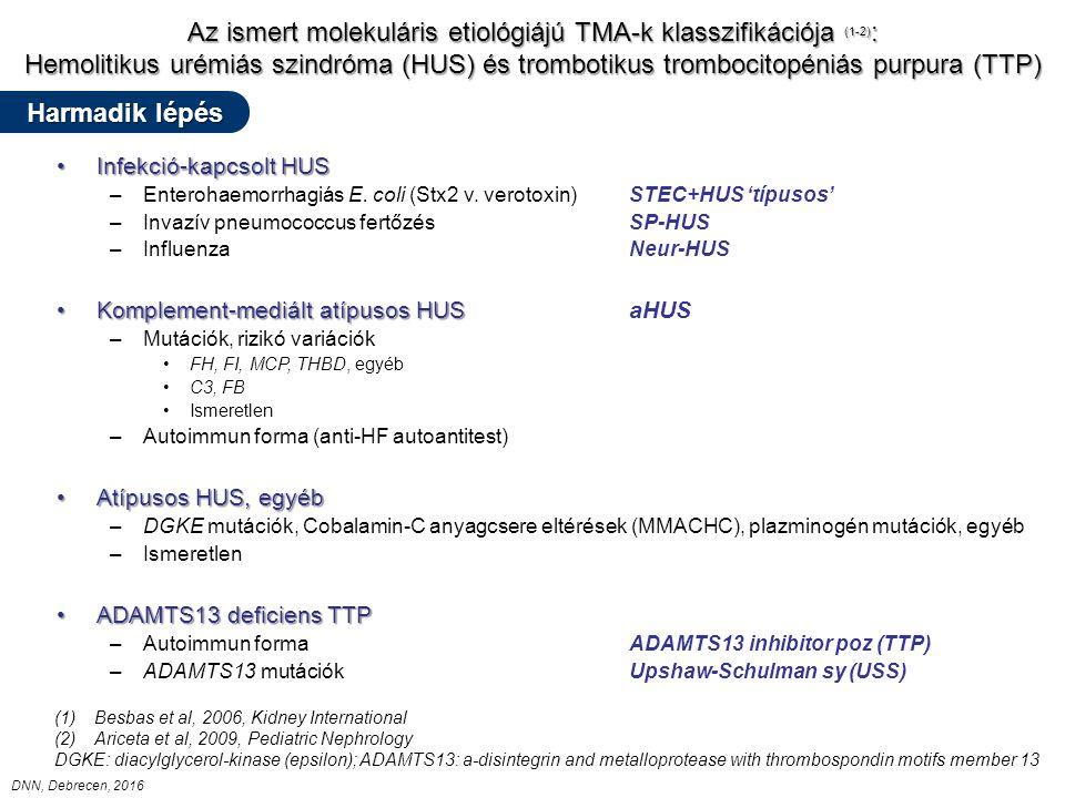 Az ismert molekuláris etiológiájú TMA-k klasszifikációja (1-2) : Hemolitikus urémiás szindróma (HUS) és trombotikus trombocitopéniás purpura (TTP) Infekció-kapcsolt HUSInfekció-kapcsolt HUS –Enterohaemorrhagiás E.