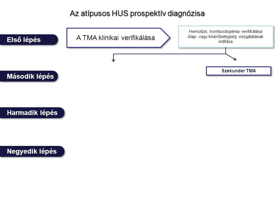 Az atípusos HUS prospektív diagnózisa Negyedik lépés Első lépés Harmadik lépés Második lépés A TMA klinikai verifikálása Hemolízis, trombocitopénia verifikálása Alap- vagy kísérőbetegség vizsgálatának indítása Hemolízis, trombocitopénia verifikálása Alap- vagy kísérőbetegség vizsgálatának indítása Szekunder TMA