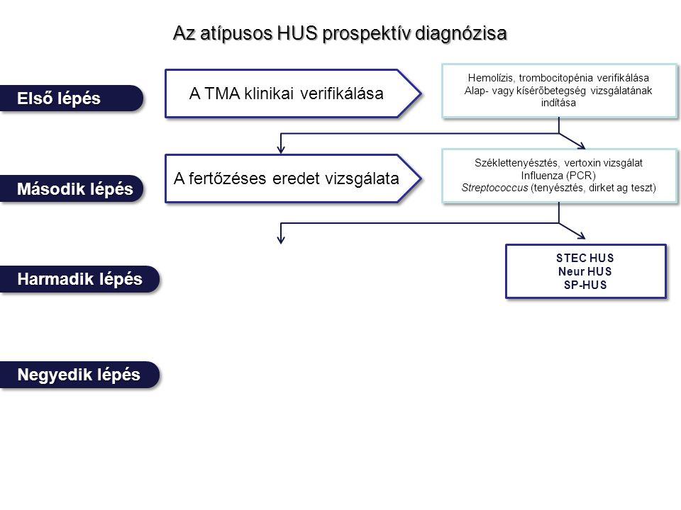 Az atípusos HUS prospektív diagnózisa Negyedik lépés Első lépés Harmadik lépés Második lépés A TMA klinikai verifikálása A fertőzéses eredet vizsgálata Hemolízis, trombocitopénia verifikálása Alap- vagy kísérőbetegség vizsgálatának indítása Hemolízis, trombocitopénia verifikálása Alap- vagy kísérőbetegség vizsgálatának indítása Széklettenyésztés, vertoxin vizsgálat Influenza (PCR) Streptococcus (tenyésztés, dirket ag teszt) Széklettenyésztés, vertoxin vizsgálat Influenza (PCR) Streptococcus (tenyésztés, dirket ag teszt) STEC HUS Neur HUS SP-HUS STEC HUS Neur HUS SP-HUS
