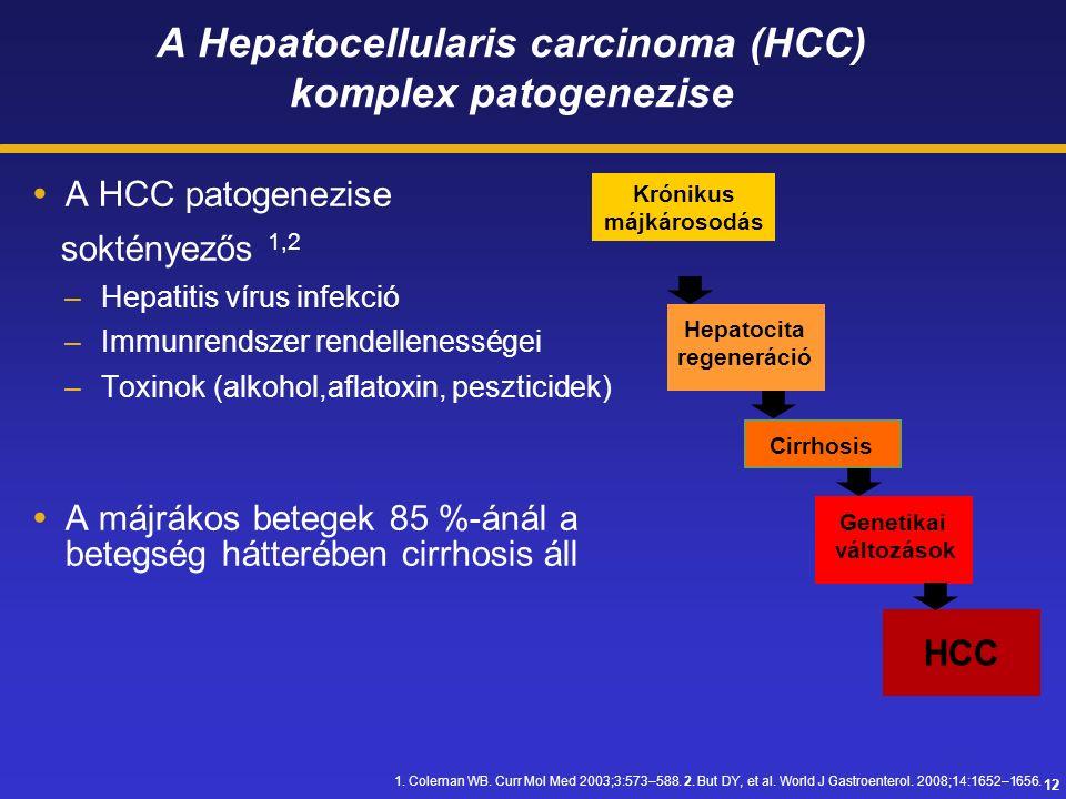 12 A Hepatocellularis carcinoma (HCC) komplex patogenezise  A HCC patogenezise soktényezős 1,2 –Hepatitis vírus infekció –Immunrendszer rendellenességei –Toxinok (alkohol,aflatoxin, peszticidek)  A májrákos betegek 85 %-ánál a betegség hátterében cirrhosis áll Krónikus májkárosodás Hepatocita regeneráció Cirrhosis Genetikai változások HCC 1.