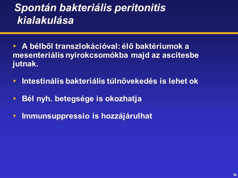 36 Spontán bakteriális peritonitis kialakulása  A bélből transzlokációval: élő baktériumok a mesenteriális nyirokcsomókba majd az ascitesbe jutnak.