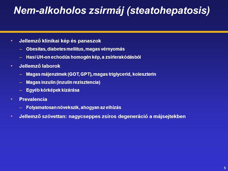 5 Nem-alkoholos zsirmáj (steatohepatosis)  Jellemző klinikai kép és panaszok –Obesitas, diabetes mellitus, magas vérnyomás –Hasi UH-on echodús homogén kép, a zsírlerakódásból  Jellemző laborok –Magas májenzimek (GOT, GPT), magas triglycerid, koleszterin –Magas inzulin (inzulin rezisztencia) –Egyéb kórképek kizárása  Prevalencia –Folyamatosan növekszik, ahogyan az elhízás  Jellemző szövettan: nagycseppes zsíros degeneráció a májsejtekben