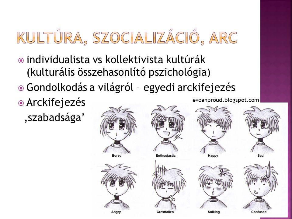  individualista vs kollektivista kultúrák (kulturális összehasonlító pszichológia)  Gondolkodás a világról – egyedi arckifejezés  Arckifejezés 'szabadsága' evoanproud.blogspot.com