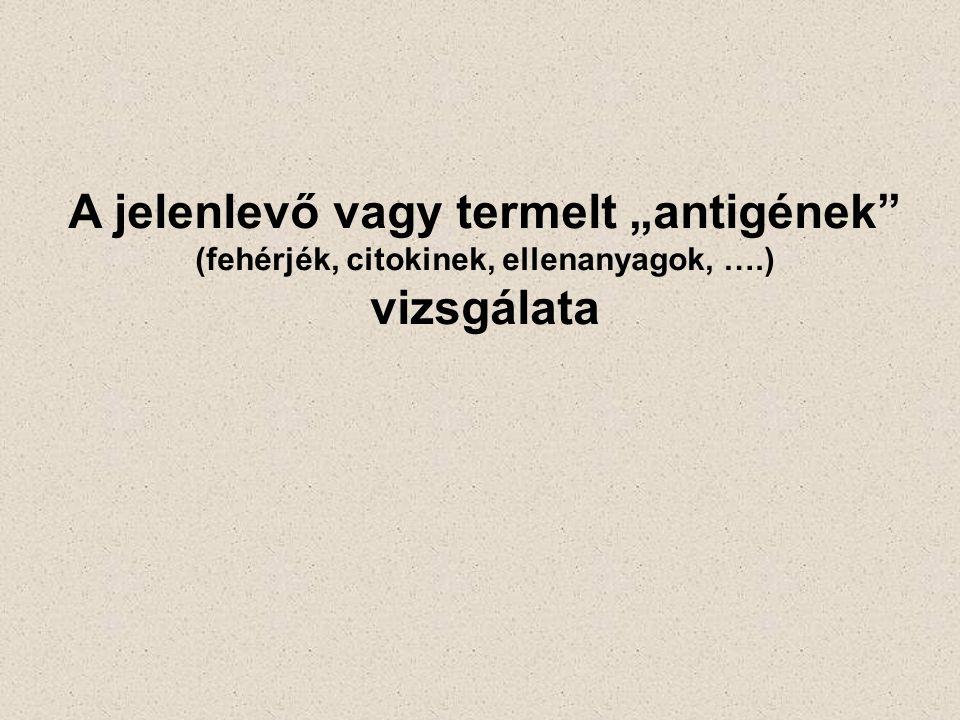 """A jelenlevő vagy termelt """"antigének (fehérjék, citokinek, ellenanyagok, ….) vizsgálata"""