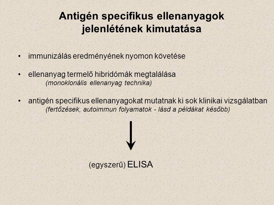 Antigén specifikus ellenanyagok jelenlétének kimutatása immunizálás eredményének nyomon követése ellenanyag termelő hibridómák megtalálása (monoklonális ellenanyag technika) antigén specifikus ellenanyagokat mutatnak ki sok klinikai vizsgálatban (fertőzések, autoimmun folyamatok - lásd a példákat később) (egyszerű) ELISA