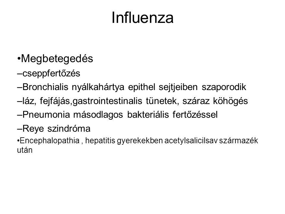 Influenza Megbetegedés – cseppfertőzés – Bronchialis nyálkahártya epithel sejtjeiben szaporodik – láz, fejfájás,gastrointestinalis tünetek, száraz köhögés – Pneumonia másodlagos bakteriális fertőzéssel – Reye szindróma Encephalopathia, hepatitis gyerekekben acetylsalicilsav származék után
