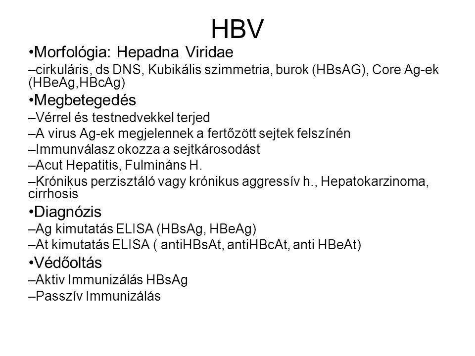 HBV Morfológia: Hepadna Viridae – cirkuláris, ds DNS, Kubikális szimmetria, burok (HBsAG), Core Ag-ek (HBeAg,HBcAg) Megbetegedés – Vérrel és testnedve