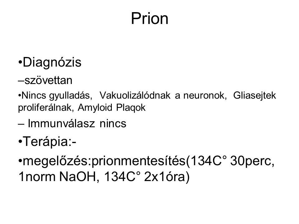Prion Diagnózis – szövettan Nincs gyulladás, Vakuolizálódnak a neuronok, Gliasejtek proliferálnak, Amyloid Plaqok – Immunválasz nincs Terápia:- megelőzés:prionmentesítés(134C° 30perc, 1norm NaOH, 134C° 2x1óra)